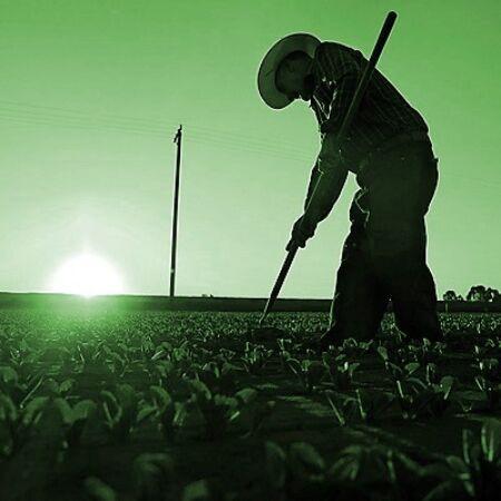 Mezőgazdaság 2. csomag